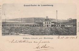 Grand-Duché De Luxembourg Wilhelm-Schacht Près De Martelange Circulé En 1903 - Luxemburg - Stad