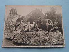 WOMMELGEM > STOET - OPTOCHT - CARNAVAL > Anno +/- 1960 ( Foto Gebofot Wommelgem Dasstraat / Zie Foto Voor Detail ) !! - Lugares