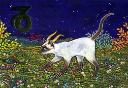 CAPRICORNE Chat Siamois - Astrology