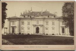 FERNEX - CHATEAU VOLTAIRE - Photographe Charnaux Frères - PHOTO Ancienne Avt 1900 - Lieux