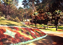 # La Baule- Les Pins - Le Parc Des Dryades - La Baule-Escoublac