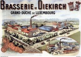Brasserie De Diekirch Grand-Duche De Luxembourg - Postcard - Poster Reproduction - Publicité