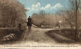 FONTENAY LE COMTE CARREFOUR DU PETIT MAILLEZAIS - Fontenay Le Comte