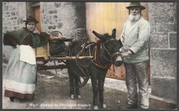 Well Known To Penzance Visitors, Cornwall, C.1905-10 - Frith's Postcard - England