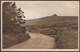 Hay Tor, Dartmoor, Devon, C.1930s - Postcard - England