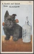 A Scotch And Splash From Glasgow, 1940s - Accordion Fold 12 Photos Novelty Postcard - Lanarkshire / Glasgow
