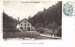 """Carte Postale Ancienne De MAISON FORESTIERE """"de SENONES"""" - Senones"""