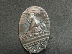 Broche -  CARNAVAL DE BALE  Suisse - FASNACHT 1989 - Argent - Jetons & Médailles