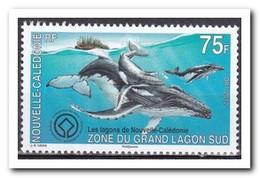 Nieuw Caledonië 2012, Postfris MNH, Fishes - Ongebruikt