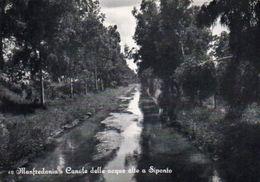 Manfredonia - Canale Delle Acque Alte A Siponto - Manfredonia