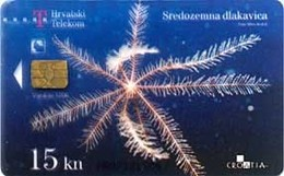TRANSPARENT Card SREDOZEMNA DLAKAVICA ( Croatie ) - Underwater - Fish - Poisson - Fisch - Pez - Pesci - Transparente - Croatie