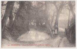 26253 BRASPARTS  (29) Chemin De Toul-ar-hoat L'obstacle Contourné -bretonne Enfant Mare   -Ed Joncour N° 412 - - France