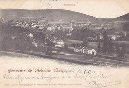 Souvenir De Vielsam - Panorama (atelier Photographique N. Schumacher, 1900) - Vielsalm