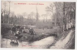 26254 BRASPARTS  (29) Les Bords De Delphine  -vache Bretonne    -Ed Joncour N° 414 - - Non Classés