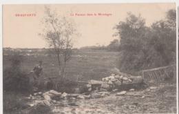 26256 BRASPARTS  (29) Facteur Dans La Montagne -poste   -Ed Joncour N° 393 - - Non Classés
