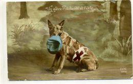 MILITAIRe - Chien De La Croix Rouge. - Guerre 1914-18