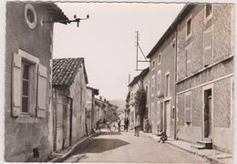 Haute  Marne :  MUSSEY-MARNE  :  Grande  Rue - France