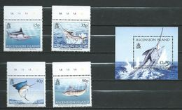 Ascension 2005 Sport Fishing.fishes.S/S And Stamps. MNH - Ascension