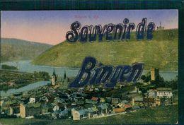 AK Bingen, Gesamtansicht, O 1920, Mit Glimmer (16683) - Bingen