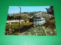 Cartolina Rosarno - Panorama Con La Ferrovia 1965 Ca - Reggio Calabria
