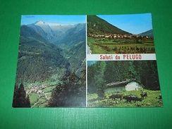 Cartolina Val Rendena - Pelugo - Vedute Diverse 1970 - Trento