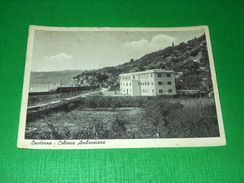 Cartolina Spotorno - Colonia Ambrosiana 1940 Ca - Savona
