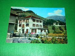Cartolina Antica Fonte Pejo - Pensione Al Ponte 1960 Ca - Trento