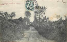 La Panne - Edit. SUGG - La Panne N° 50 -  Le Sentier Du Duinhoeck - De Panne