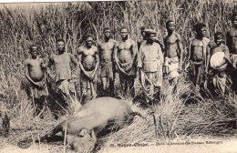 V10894 Cpa Moyen Congo - Dans La Brousse Du Plateau Bakougni - Congo - Brazzaville