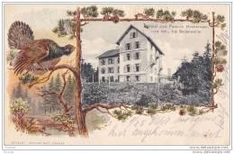 Hotel Und Pension Hochblauen , 1170 Mtr. , Bei  Badenweiler   - (carte Gaufrée + Tampon Hotel +  Oblitération De 1906) - Badenweiler