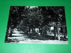 Cartolina Misano Mare - Viale Della Repubblica 1961 - Rimini