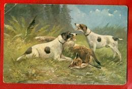 Hunting Dog AND FOX VINTAGE POSTCARD 507 - Dogs