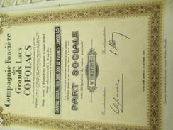 Compagnie Foncière Des Grands Lacs COFOLACS/ Part Sociale /Congo Belge/Bruxelles/1956       ACT121 - Africa