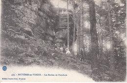 Bruyères En Vosges - Les Roches De Pointhaie - Bruyeres