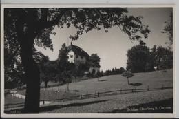 Schloss Oberberg Bei Gossau St. Gallen - Photo: Andr. Hane - SG St. Gall