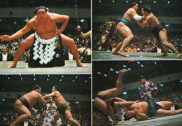 B 1310 - Sport, Sumo, Giappone - Martiaux