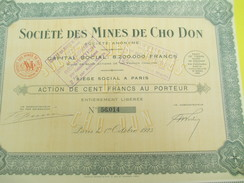 Société Des Mines De Cho-Don/Action De 100 Francs Au Porteur/Indochine/Paris /1925          ACT141 - Asie
