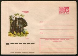 """Russia USSR 1975 Stationery Cover Fauna, Birds; Capercaillie, Reserve """"Stolby"""" - Birds"""
