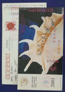 Diamond Rings,shell,seashell,Ming Brand Jewellery,China 2001 Zhejiang Sun & Moon Jewellery Advertising Pre-stamped Card - Coneshells