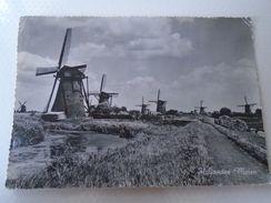 D151696 Hollandse Molen   -Mill  Moulin  Mühle - Molinos De Viento