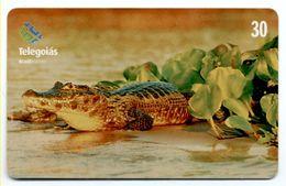 Crocodile Jararé Caiman Télécarte Phonecard  Telefonkarte (S.205) - Brasile