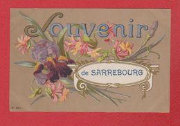 Sarrebourg  --  Souvenir De Sarrebourg  --  écriture Au Dos - Sarrebourg