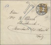 Schweiz Streifband S 25 Tellknabe BERN 13.1.1914 Mit T-Stempel N. Neustadt/Pfalz - Switzerland