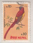 Nepal  1990's  Birds  10 Rs  Used   # 95889 - Songbirds & Tree Dwellers