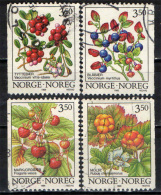 NORVEGIA - 1995 - BACCHE SELVATICHE - USATI - Oblitérés