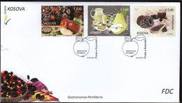 Kosovo 2016 / Gastronomy / Pears, Apples, Blackberries, Plants, Fruits, Flora, Food, Juice, Drink, Flowers / FDC - Kosovo