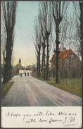 A Continental Rustic Avenue, 1904 - Postcard - Postcards