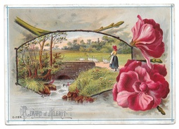 Antique Victorian Reward Of Merit Card Girl Herding Geese Postcard Size Litho Unused - Trade Cards