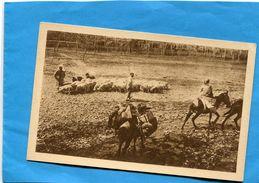 MONGOLIE-dans Les Steppes Missionaires à Cheval-troupeau  De Moutons Et Mongols -années 20-édition Aulard - Mongolei