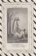 7AJ127  IMAGE PIEUSE RELIGIEUSE DENTELLE LE JARDIN DE L'AME 2 SCANS - Devotion Images